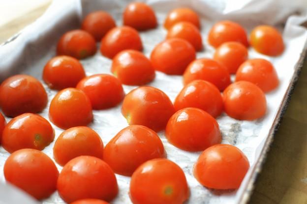 עגבניות שרי