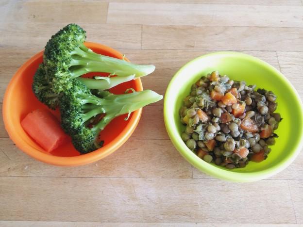תבשיל עדשים וירקות, ברוקולי וגזר מבושלים